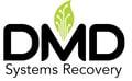 DMDS1001VectorLogo_Color-1